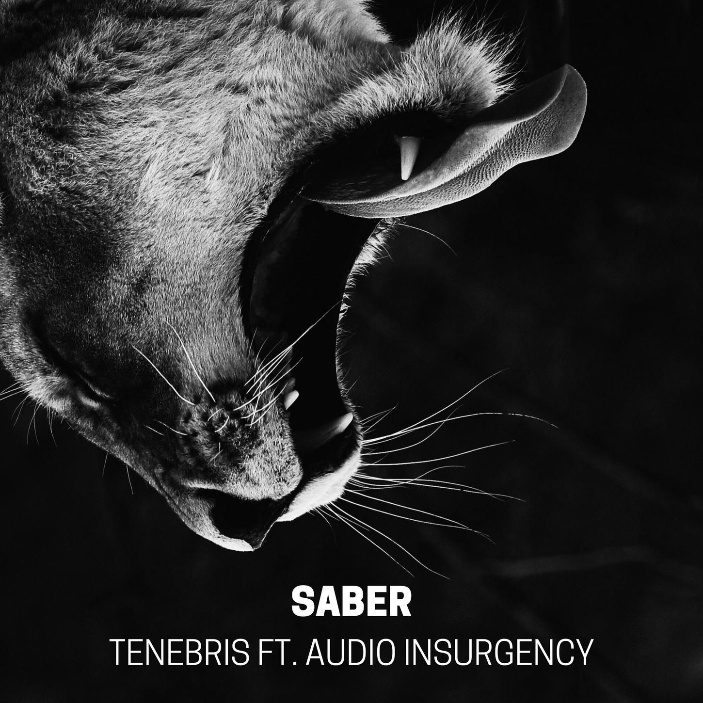 Tenebris ft. Audio Insurgency - Saber - BIBLIOTEKA010 - SINGLE