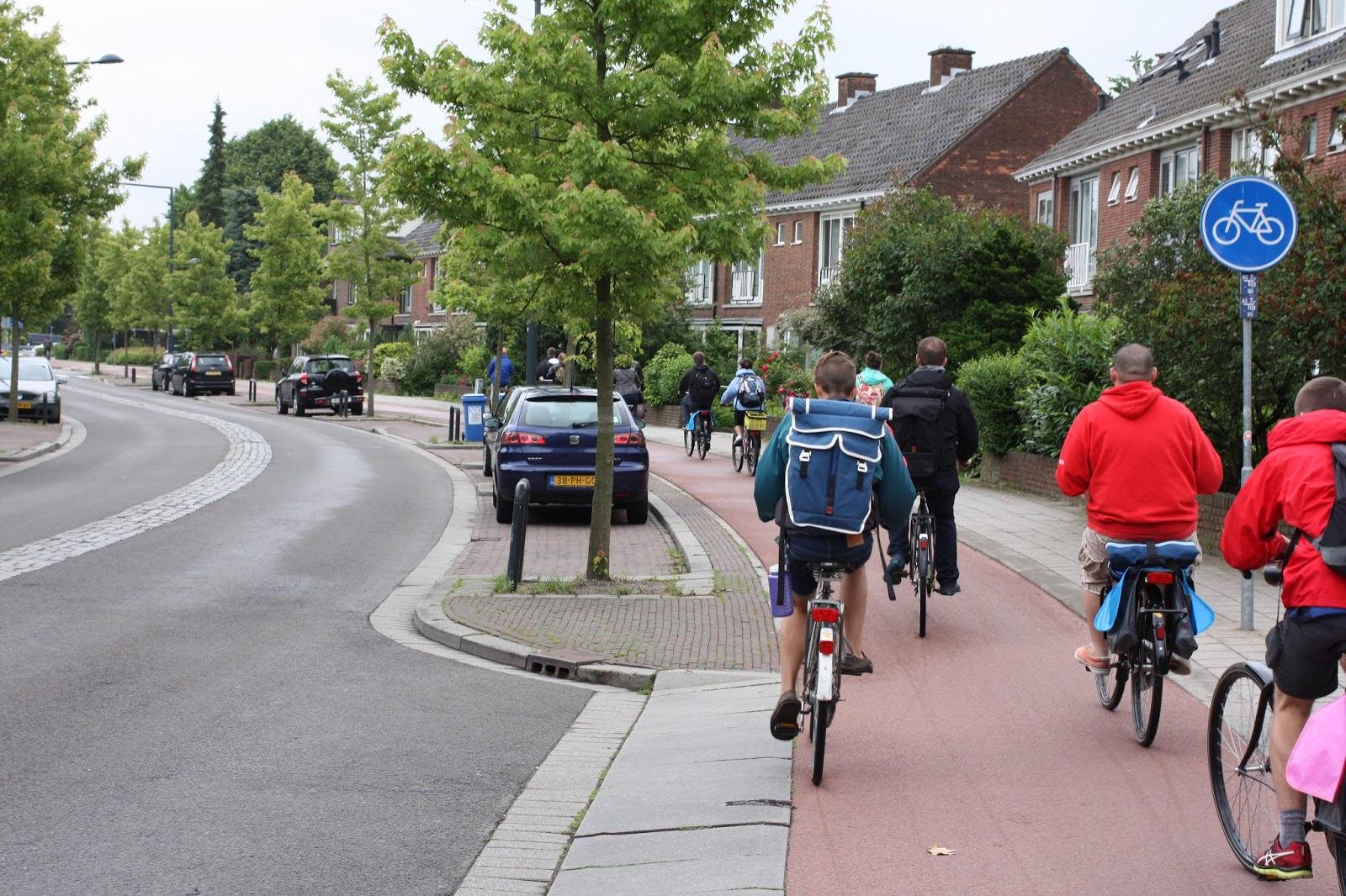 Dutch Cycle Lane - Netherlands