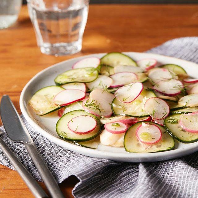 Dill, Radish and Cucumber Salad for The Hashimoto's AIP Cookbook #radish #cucumber #dill #lemon #thehashimotosaipcookbook #cookbook #callistomedia #foodstylist #foodphotography #foodstyling 📷 @eviabeler