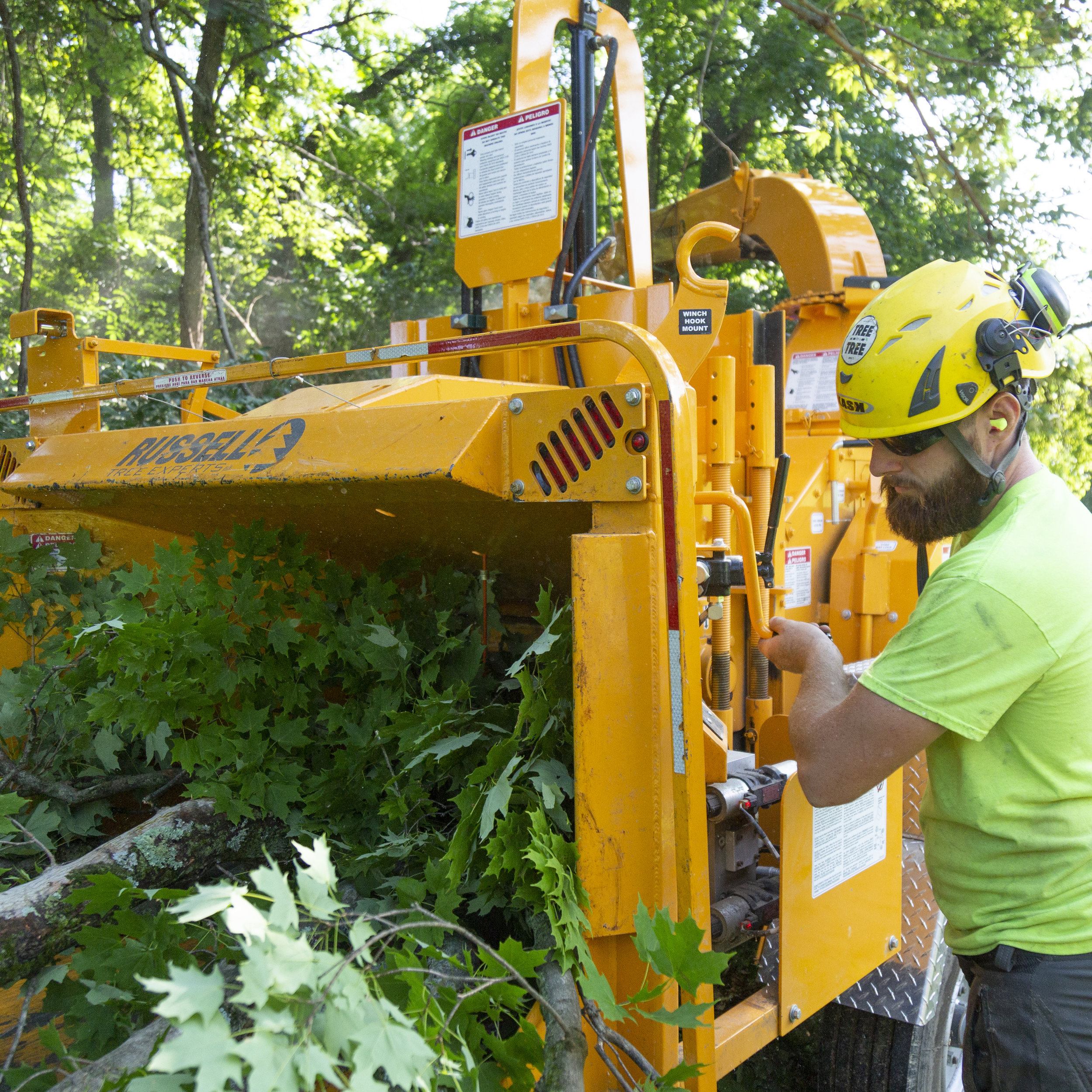 High Capacity Chippers - Used to chip large trees all at one time - no need to cut trees into smaller chunks