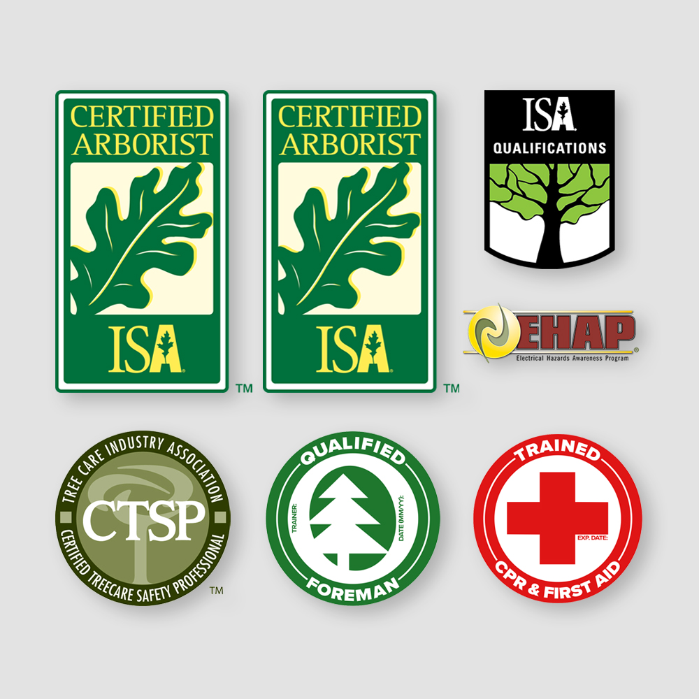 Education - - 10 ISA Certified Arborists®- 1 ISA BCMA®- 2 TCIA CTSP- Line Clearance Qualified Crews- First Aid & CPR Certified
