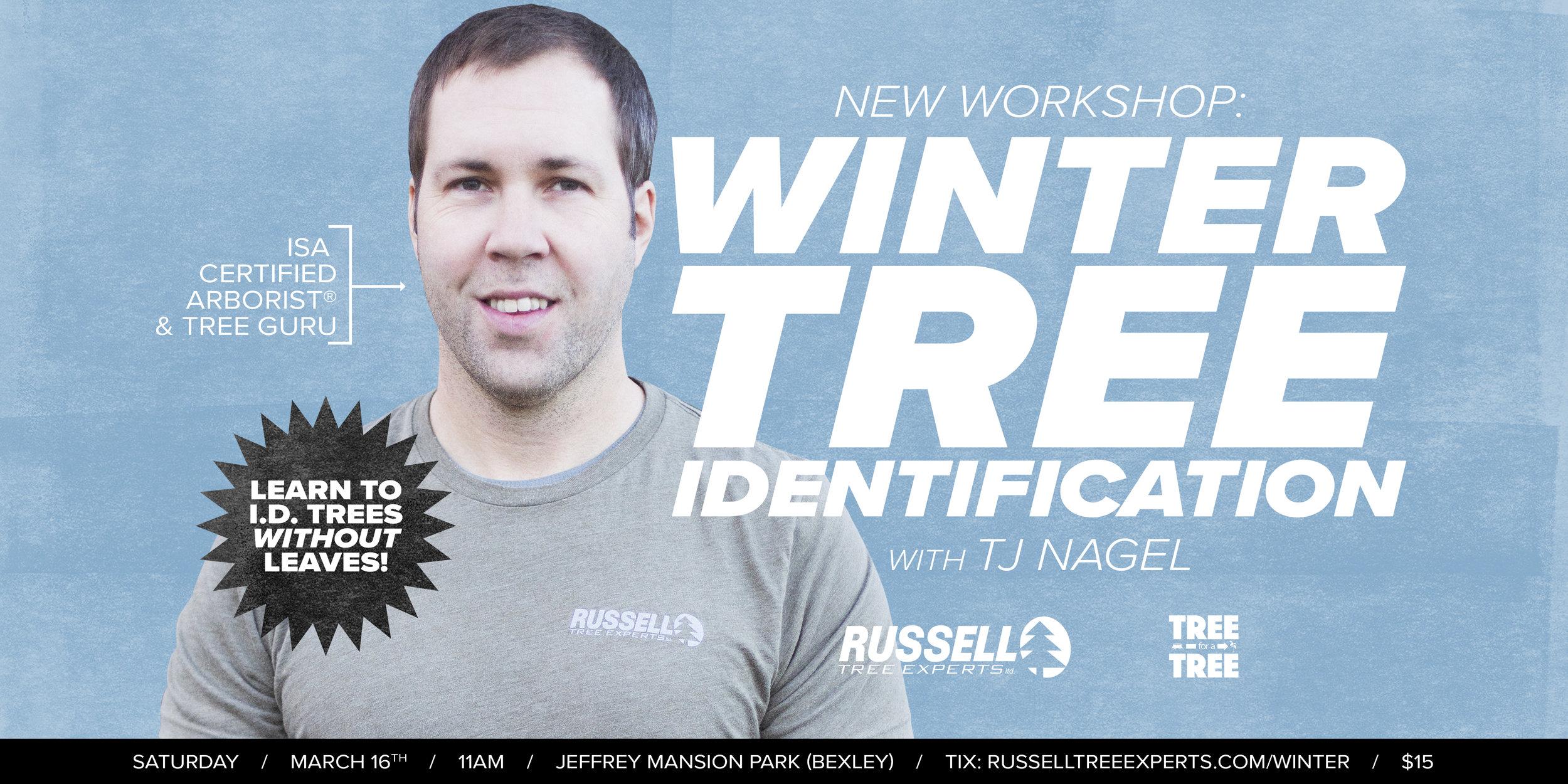 190316-winter-tree-ID.jpg