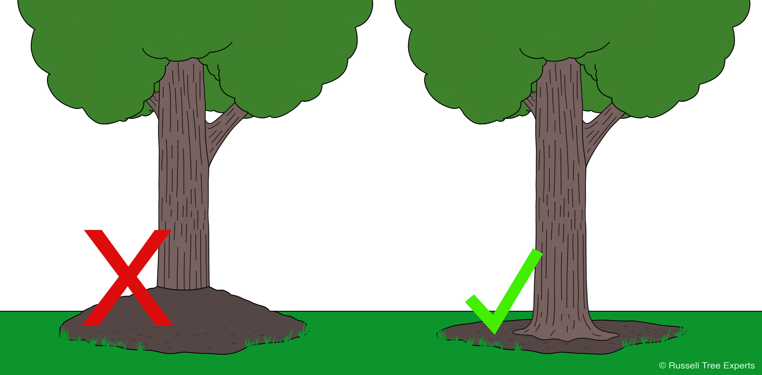 Bad vs. Good mulching techniques // Proper mulching around a tree keeps the root flare visible while having about 2 inches of mulch depth on the root zone.