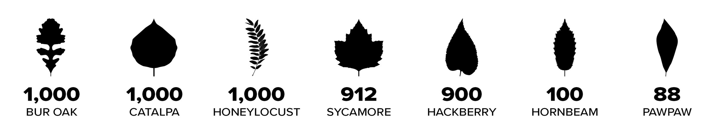A breakdown of the 5,000 trees planted at Scioto Grove Metro Park on April 26, 2019 (Arbor Day)