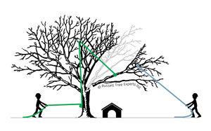 removal-rigging.jpg