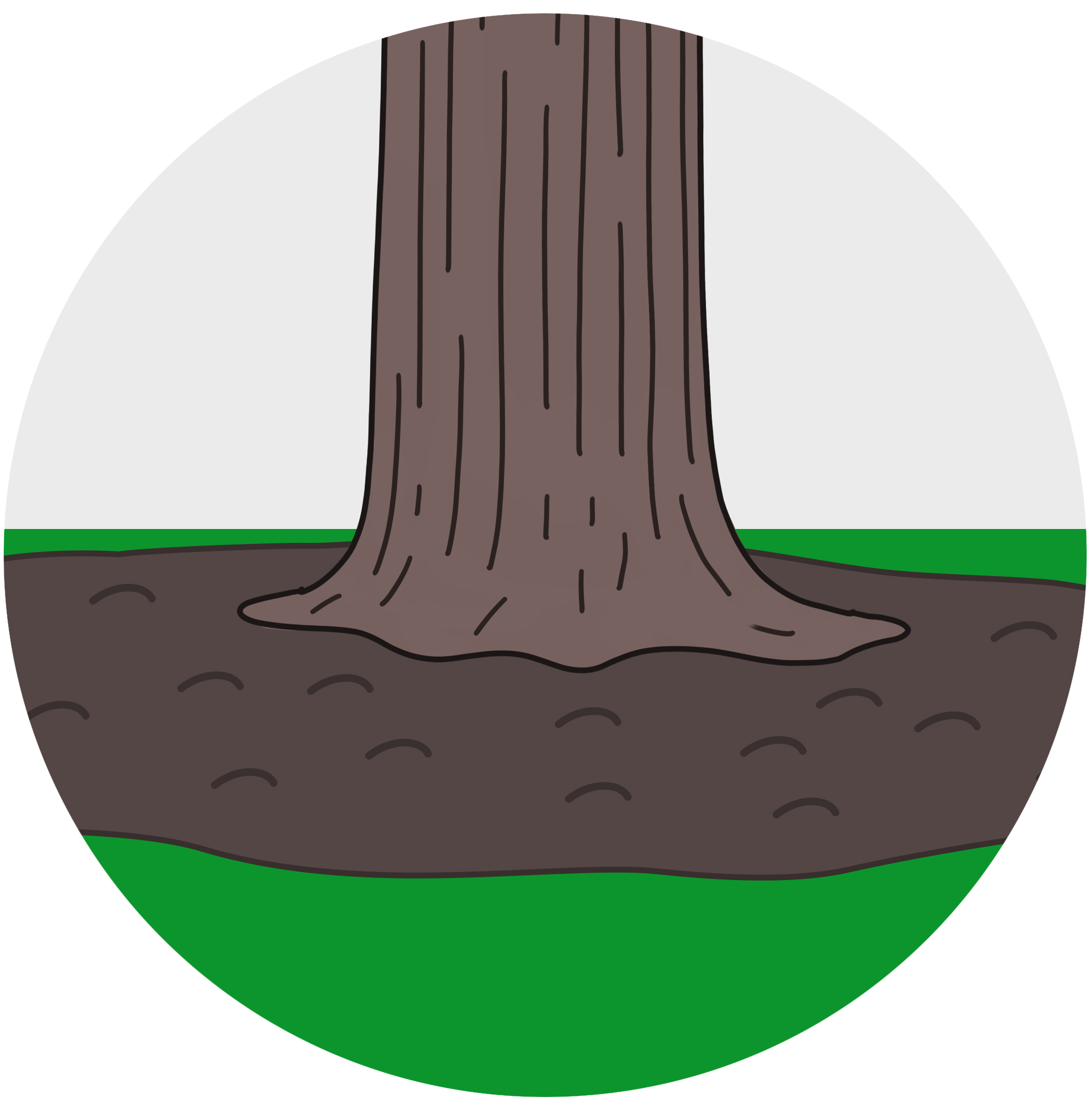 """STEp 4 - The root zone is then covered with composed mulch and voila! - the tree can """"breathe"""" again!"""