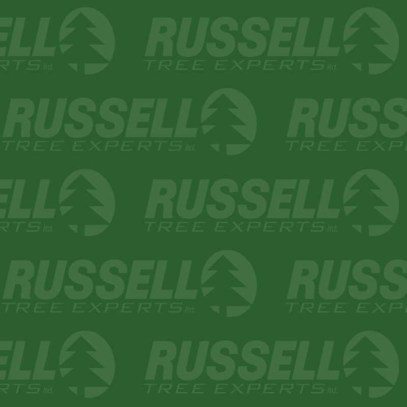 - Company is renamed to Russell Tree Experts ltd. and new logo is revealed