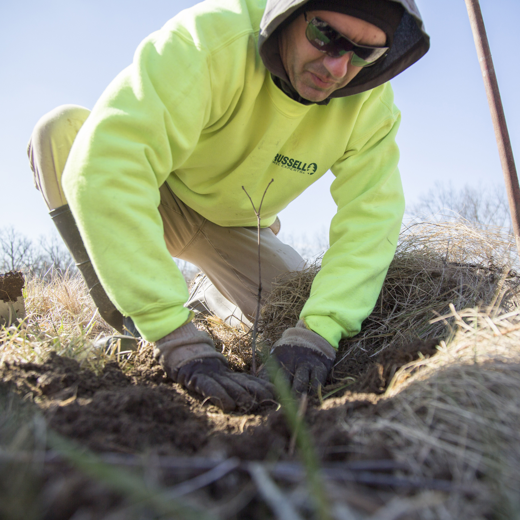 - TREE FOR A TREE® program is launched