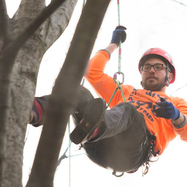 - Three Russell Tree Experts arborists compete in the Ohio Chapter ISA Tree Climbing Competition in Columbus, Ohio
