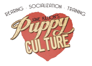 Puppy Culture about.png