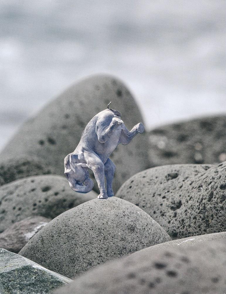 Yogafant