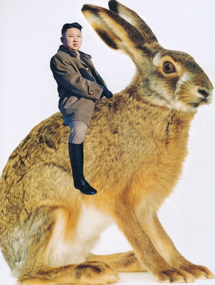 little rabbit man - DONALD
