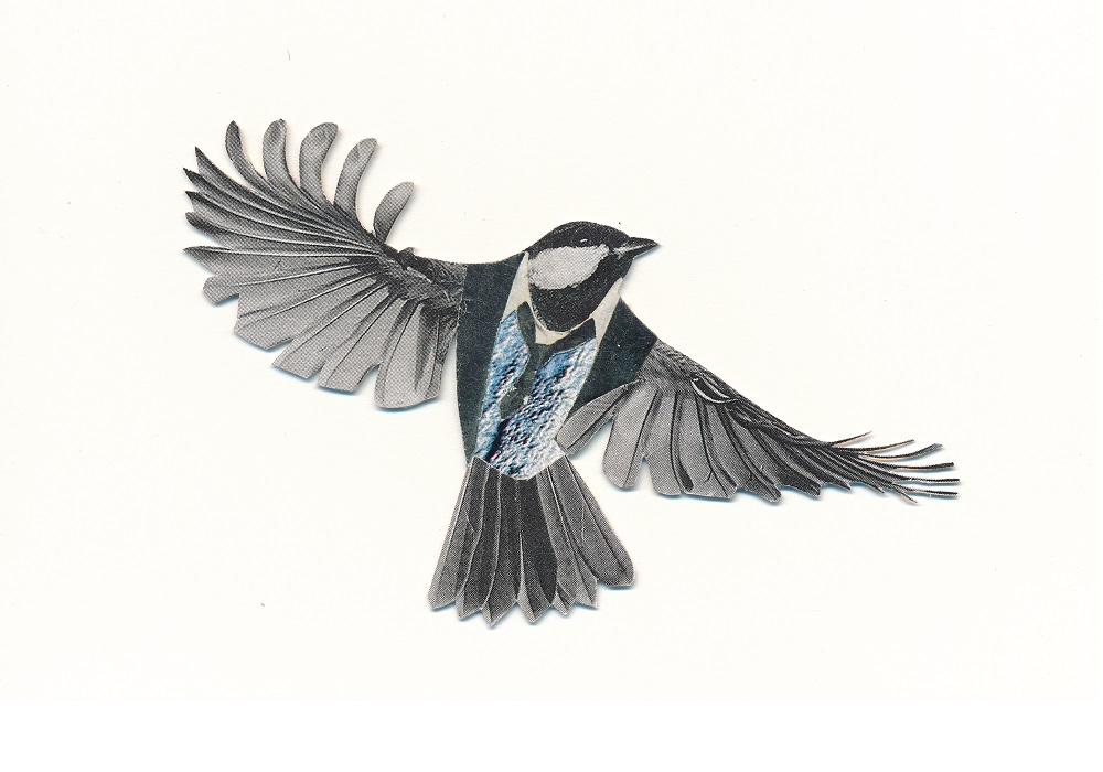 business bird - ANIMAL KINGDOM
