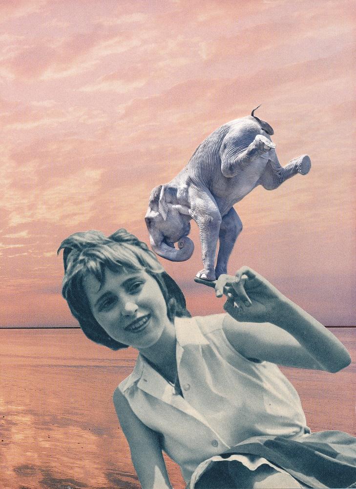 The Girl and the elephant - ANIMAL KINGDOM