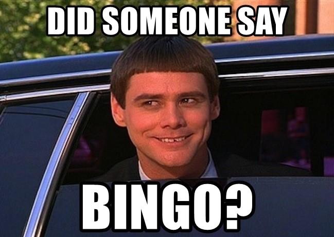 did-someone-say-bingo (2).jpg