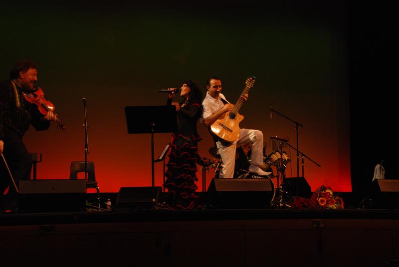 4_concerts_lg.jpg