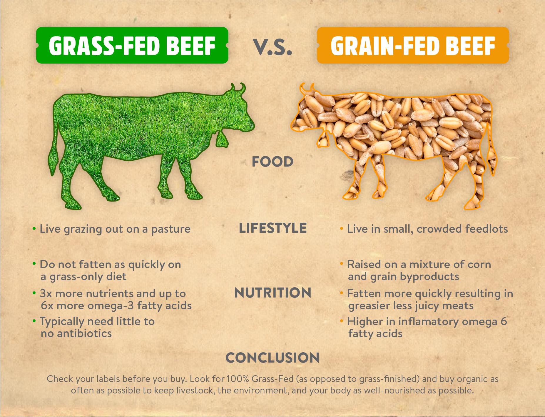Grass_Fed_Vs_Grain-02.jpg