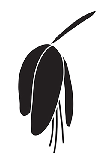 Logo Design for Fuchsia a Retail Jewelry & Gift Boutique. Portland Oregon 2006
