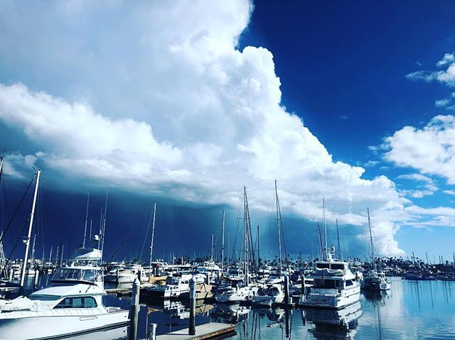 That was quite an abrupt change. Thunder and lightning to sunny, clear blue skies. ⛈☀️ #pointloma