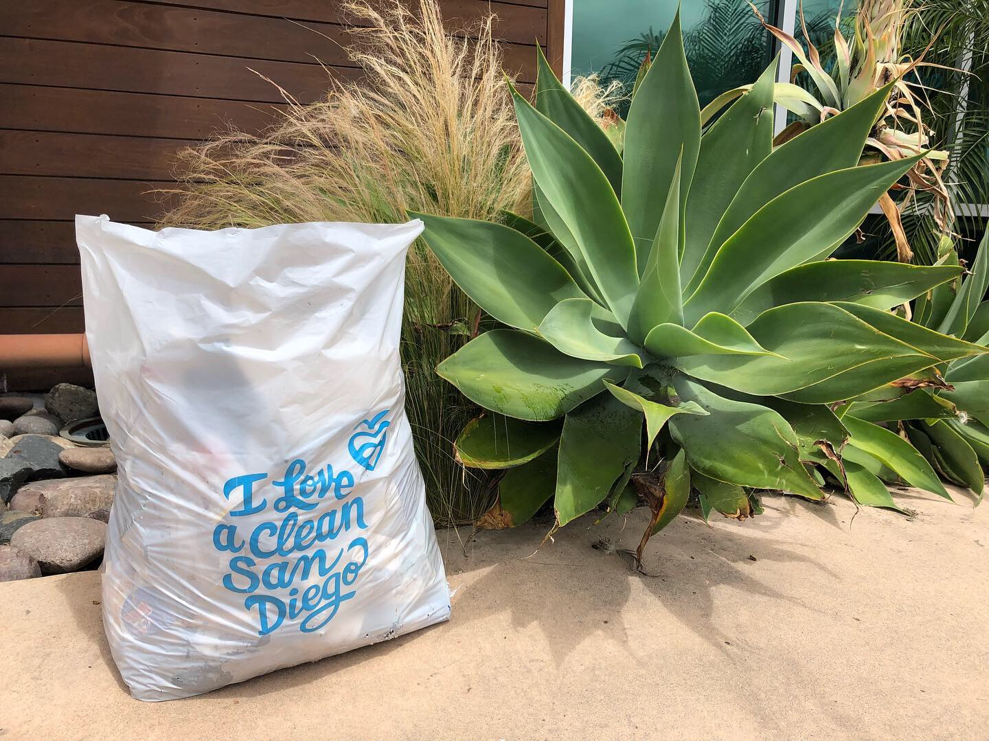 point-loman-trash-cleanup-i-love-a-clean-san-diego-may-7-2019.JPG