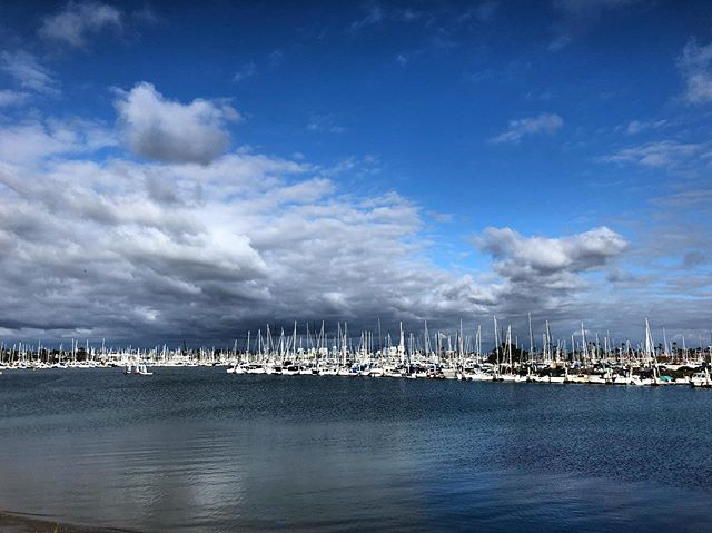 Our Maritime Wonderland just doing its thing... being beautiful as always. #pointloma