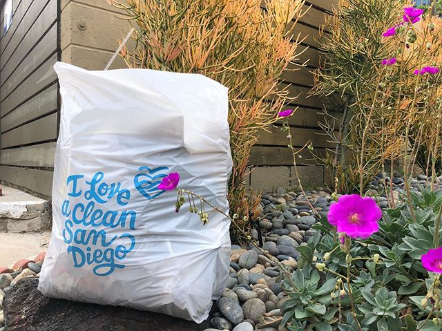 It's getting cleaner all the time. Point Loma picked up one bag of litter today on a 1.43-mike route in Roseville. #pointloma #trashtag @iloveacleansd