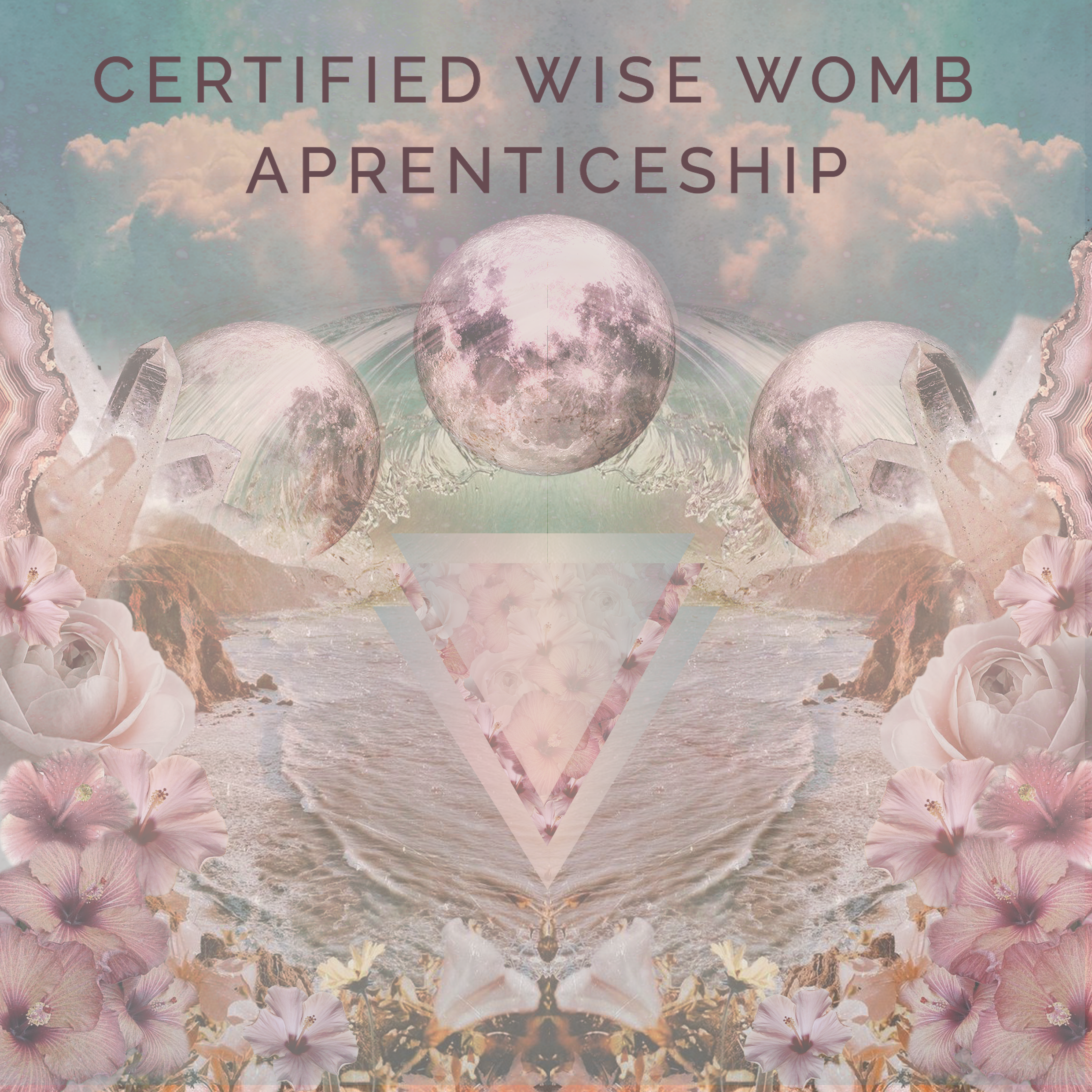 certified wise womb aprentisceship2.png