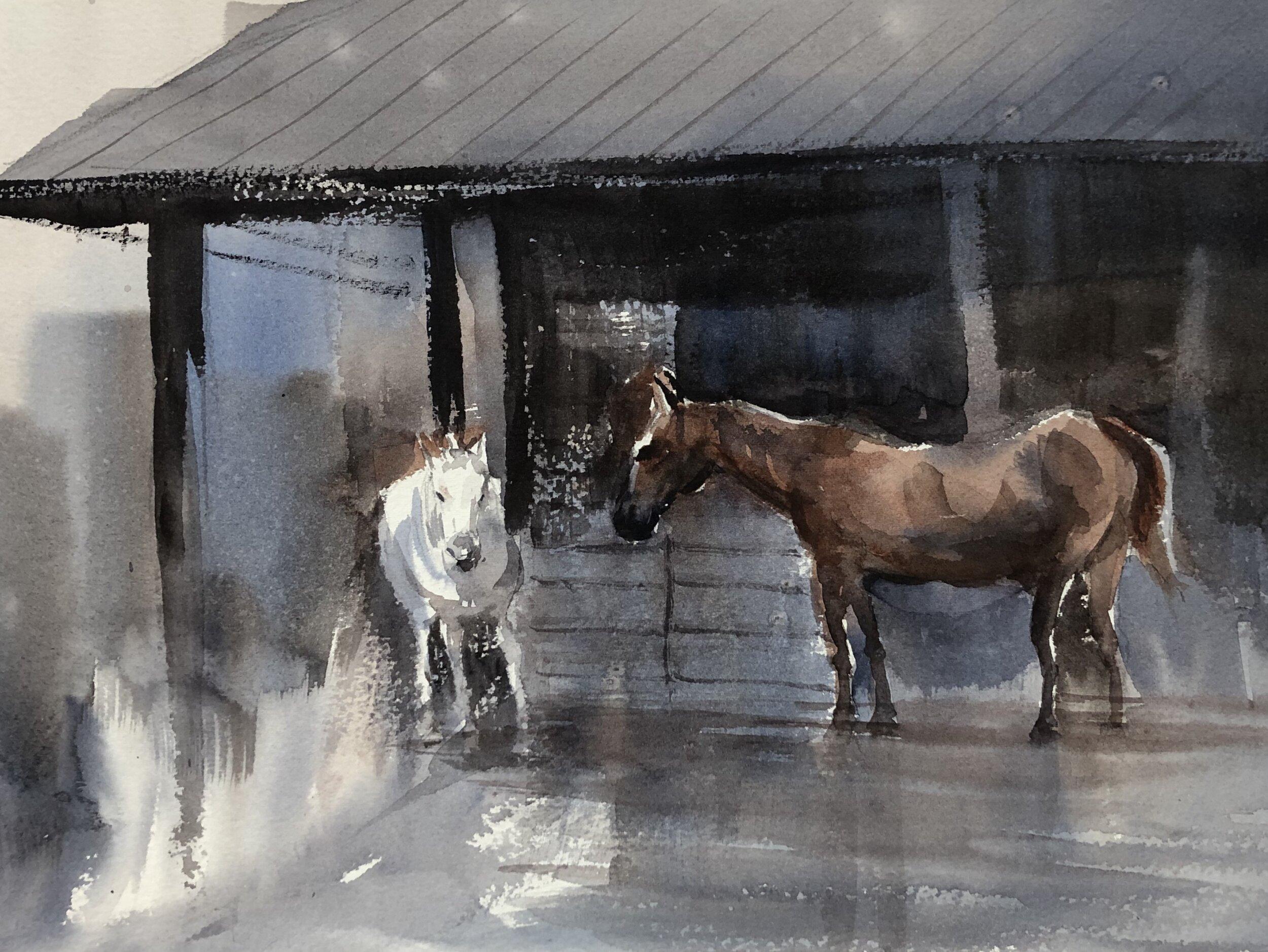 Horses at Sycamore Run