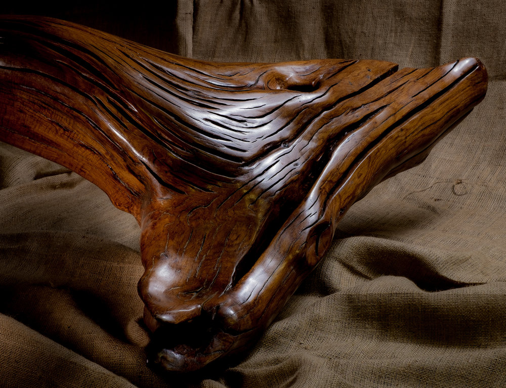 - Whale Tail Bench (detail of Shot),Photo taken By Phil Peake all rights reserved. 2017