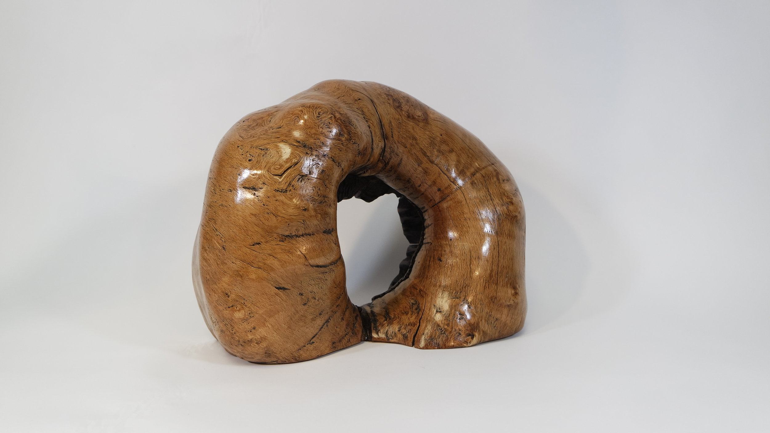 Oak Burl With encloser (12).JPG