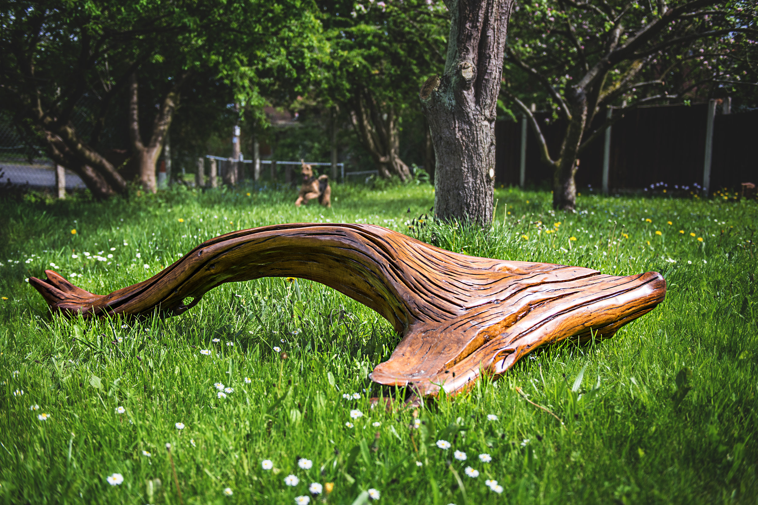 whale tail bench (41).jpg