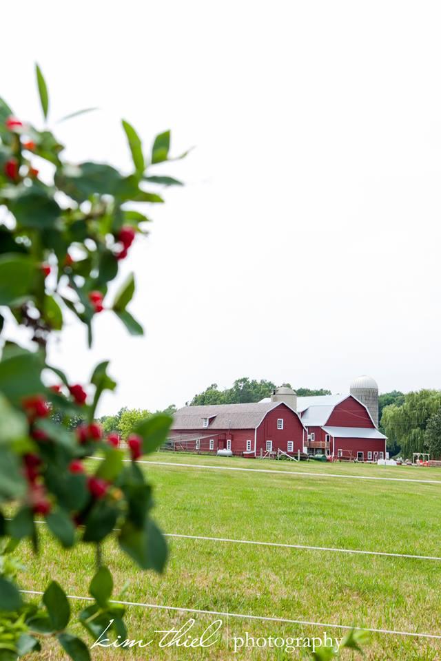 Sawyer Farms.jpg