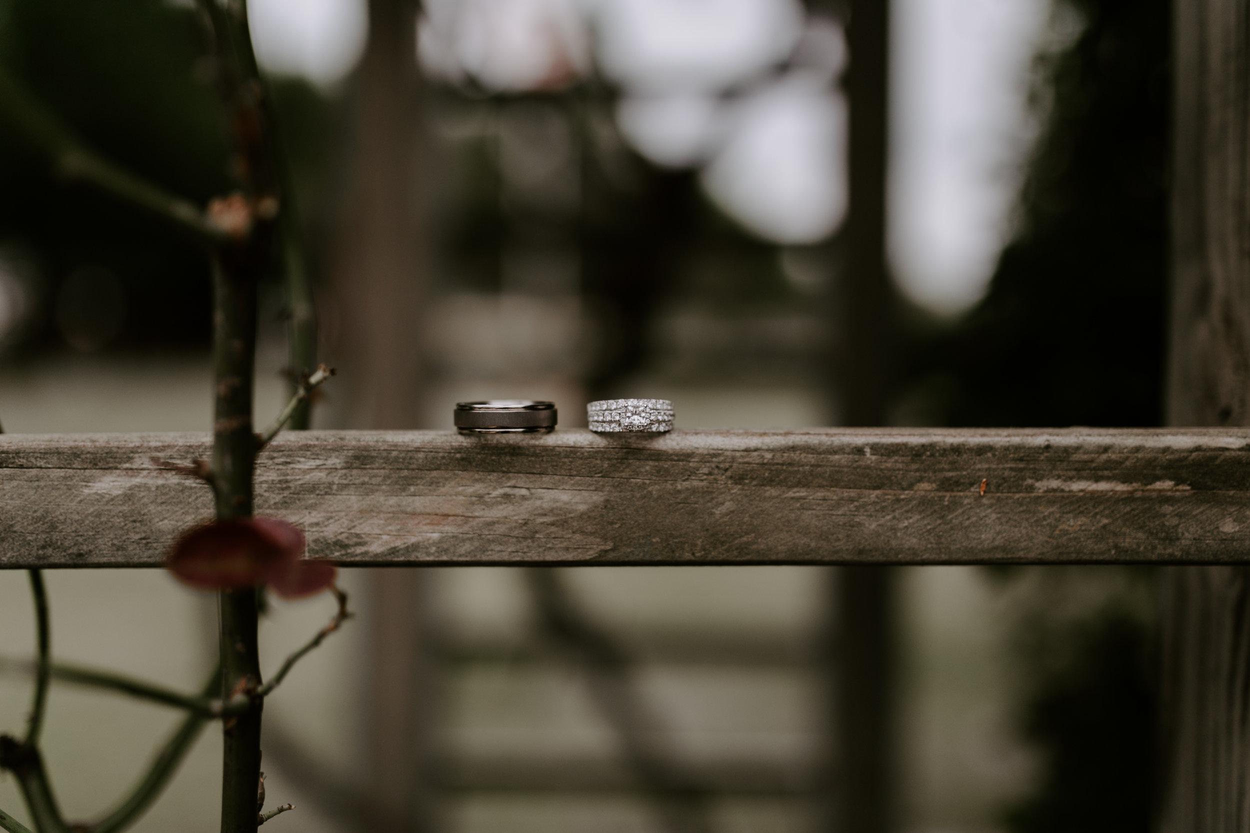 Clary Wedding-7.jpg