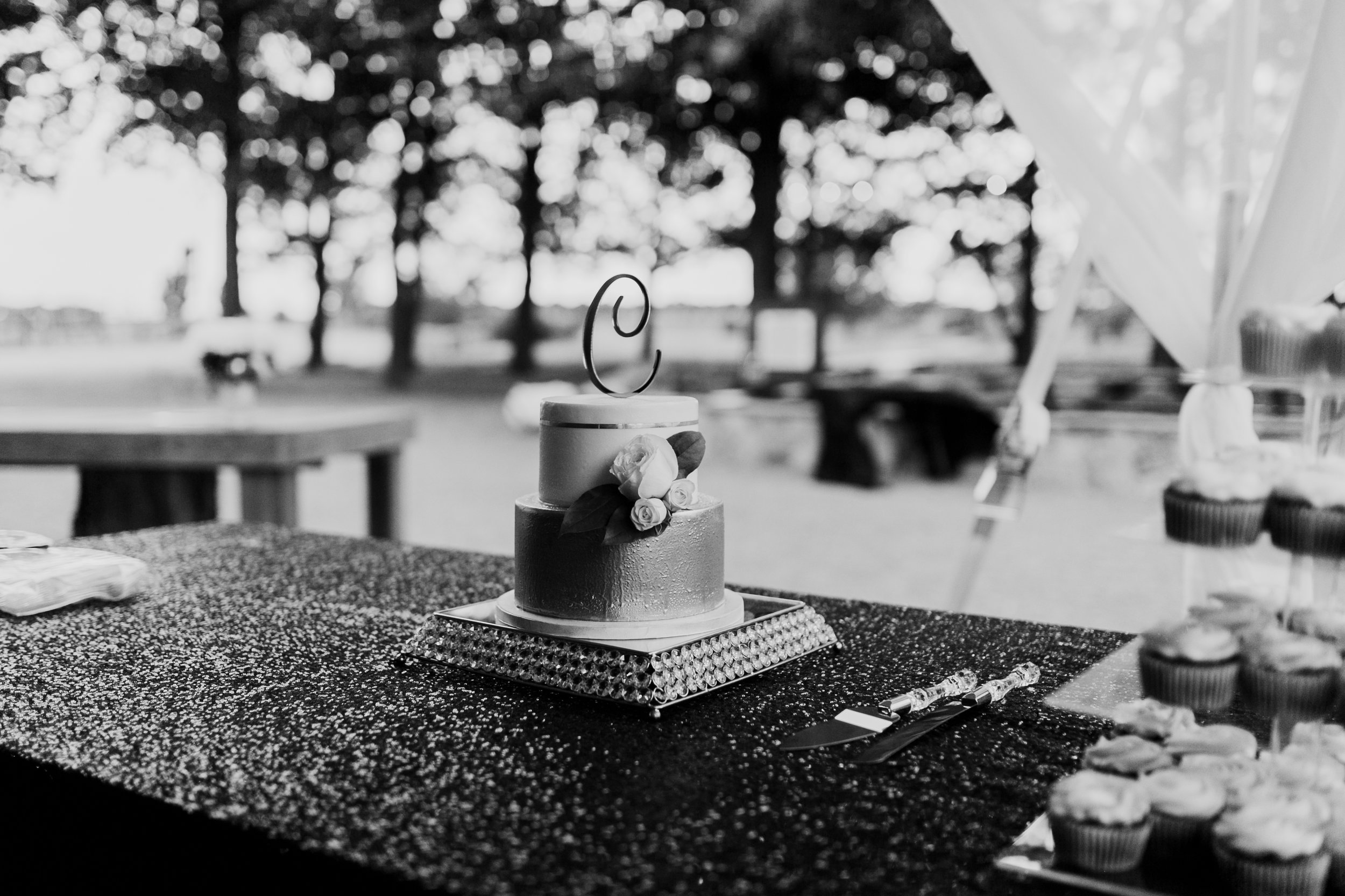 Clary Wedding-467.jpg