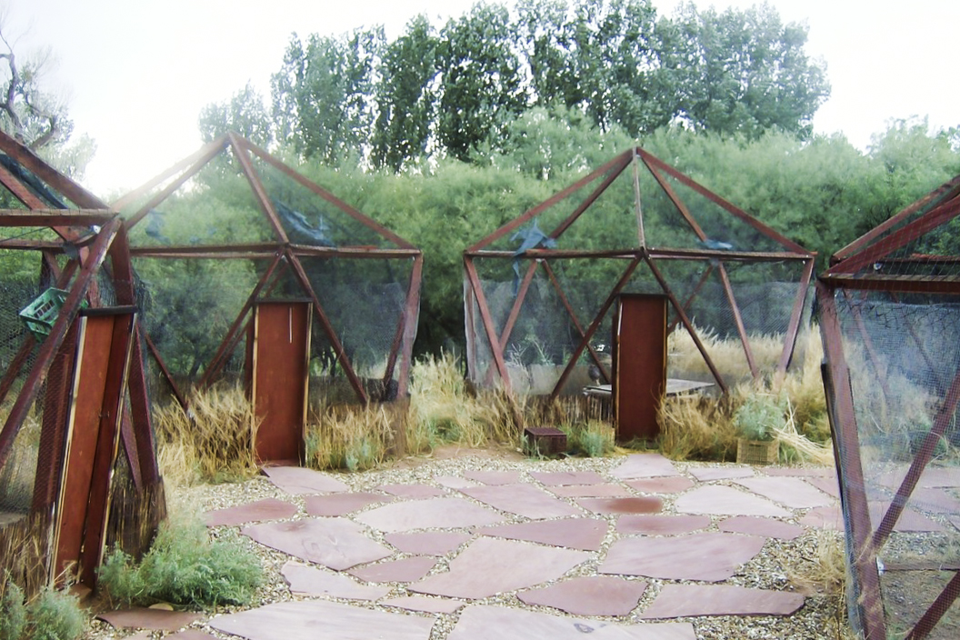 runninw-enclosures.jpg