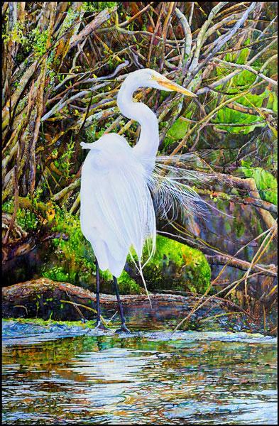 Egret,-Early-Summer,-Avalon-Preserve,-Stony-Brook,-NY,--Mounted-Watercolor-on-Canvas-43-x-28,-2017
