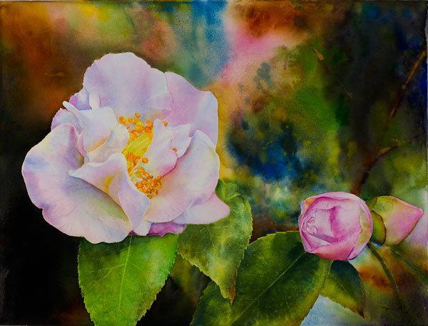 Ross Barbera, White Camellia, Mixed Media on Canvas, 32 x 42, 2014