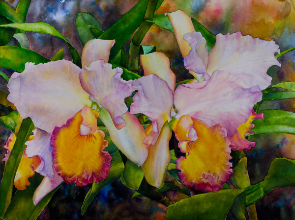 Ross-Barbera,-Orchids,-Watercolor-on-Paper,-30-x-40,-2014