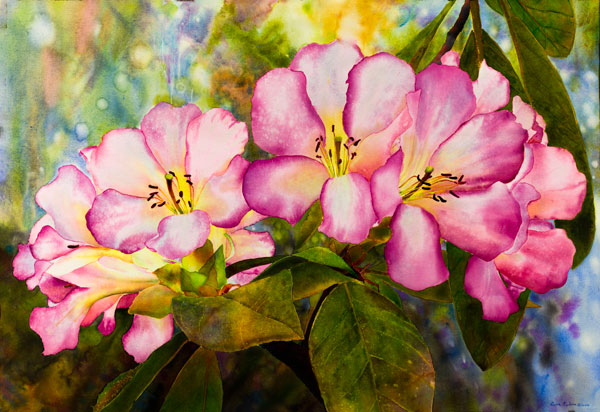 Ross-Barbera,-Red-Rhododendrons,-Mounted-Watercolor-on-Canvas,-32-x-42,-2014