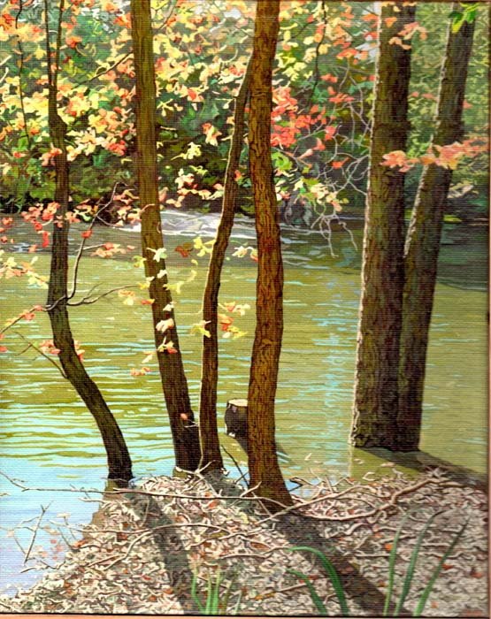Shain Bard - Pond without Duck - Oil