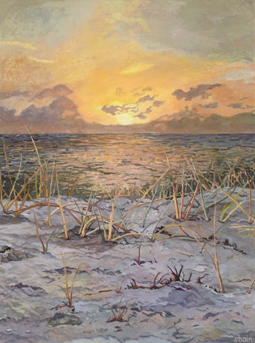 Shain Bard - Sun Setting Over the Dunes - Oil