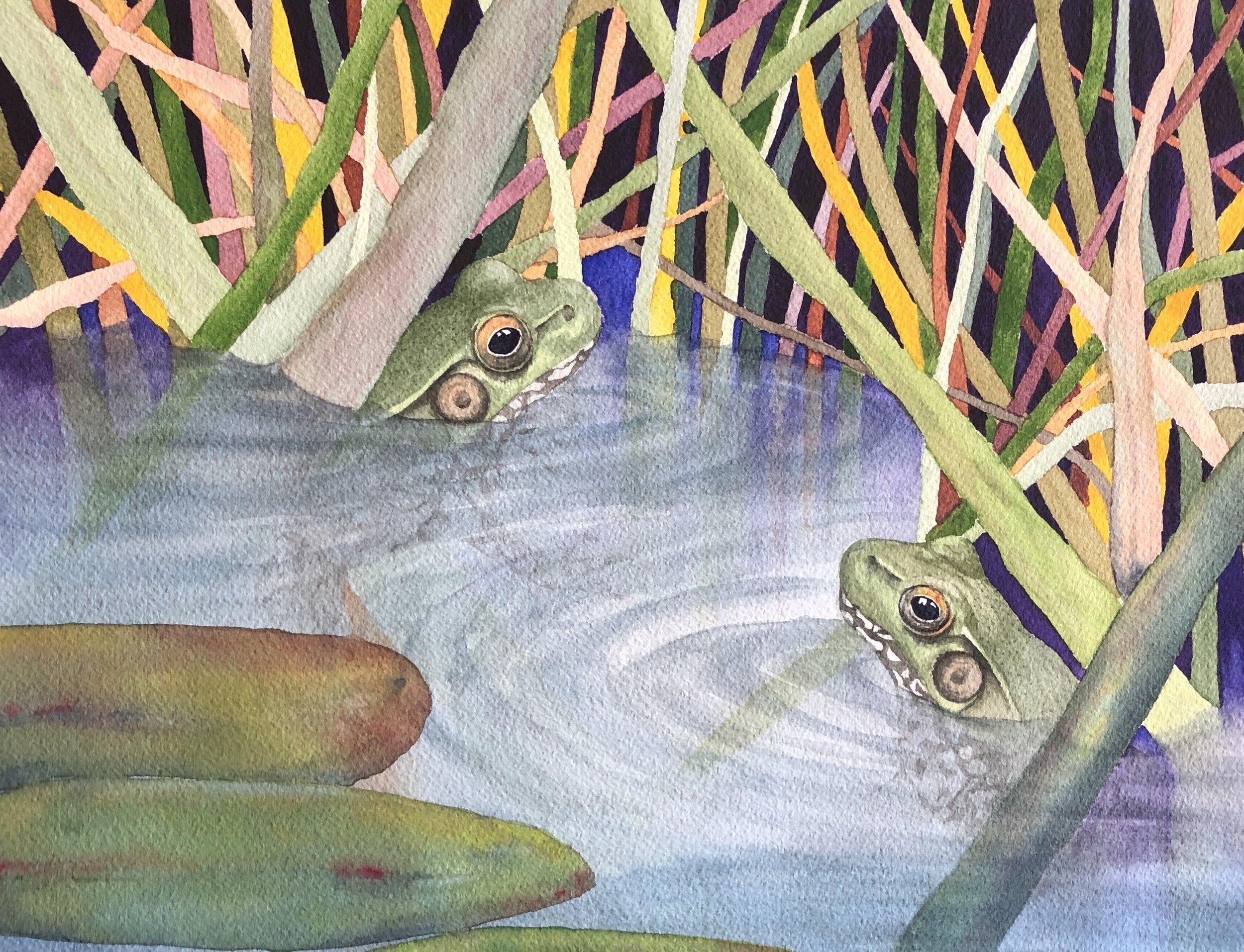 Lynn Kinsella-Frogs in a Pond-Watercolor-$130