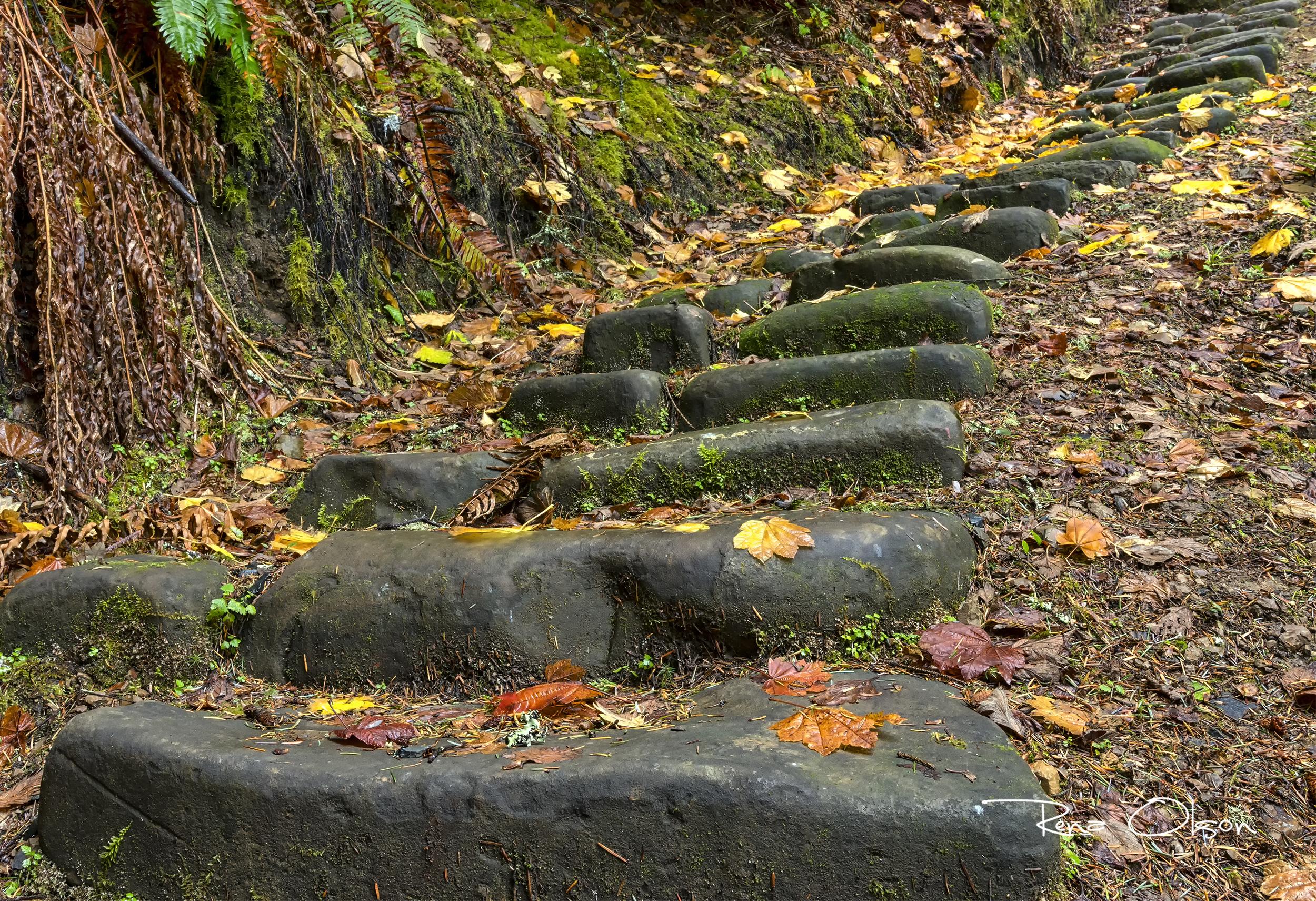IMG_2988-yakona-stone-stairsaSQ.jpg