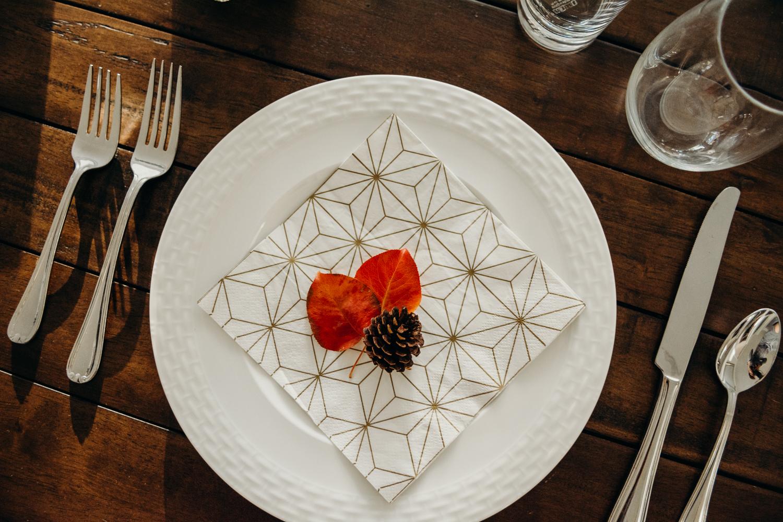 leaves + pinecones -