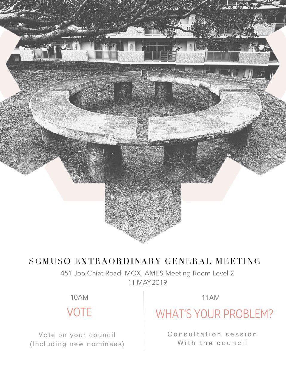 EGM & consult poster.jpg