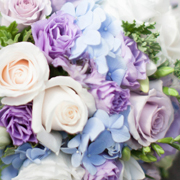 pastel-lavender - Copy.jpg