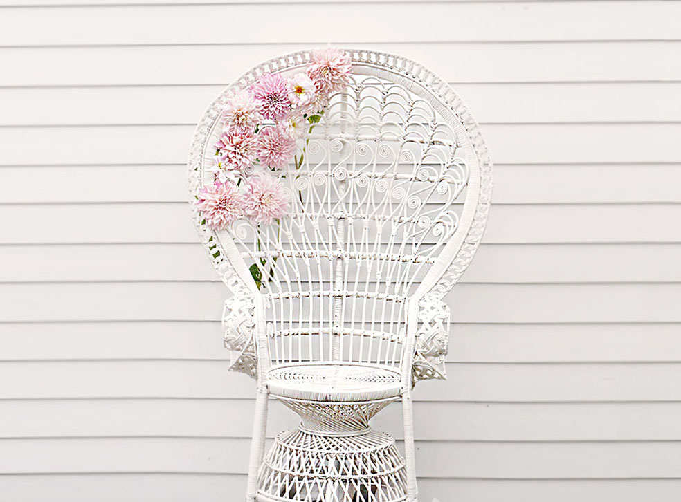 peacock-chair-hire-wedding-event-rent-cane.jpg