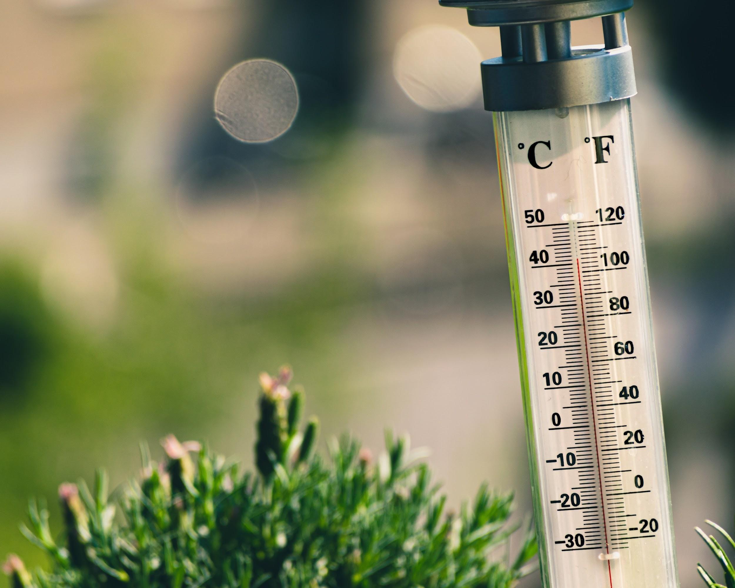 熱浪來襲,歐美各地溫度飆破 40 ℃