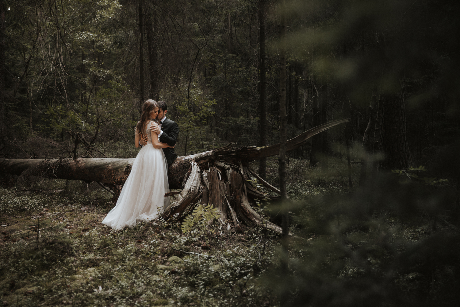 weddingphotograher_klaudia_rafal_nationalpark_498.jpg
