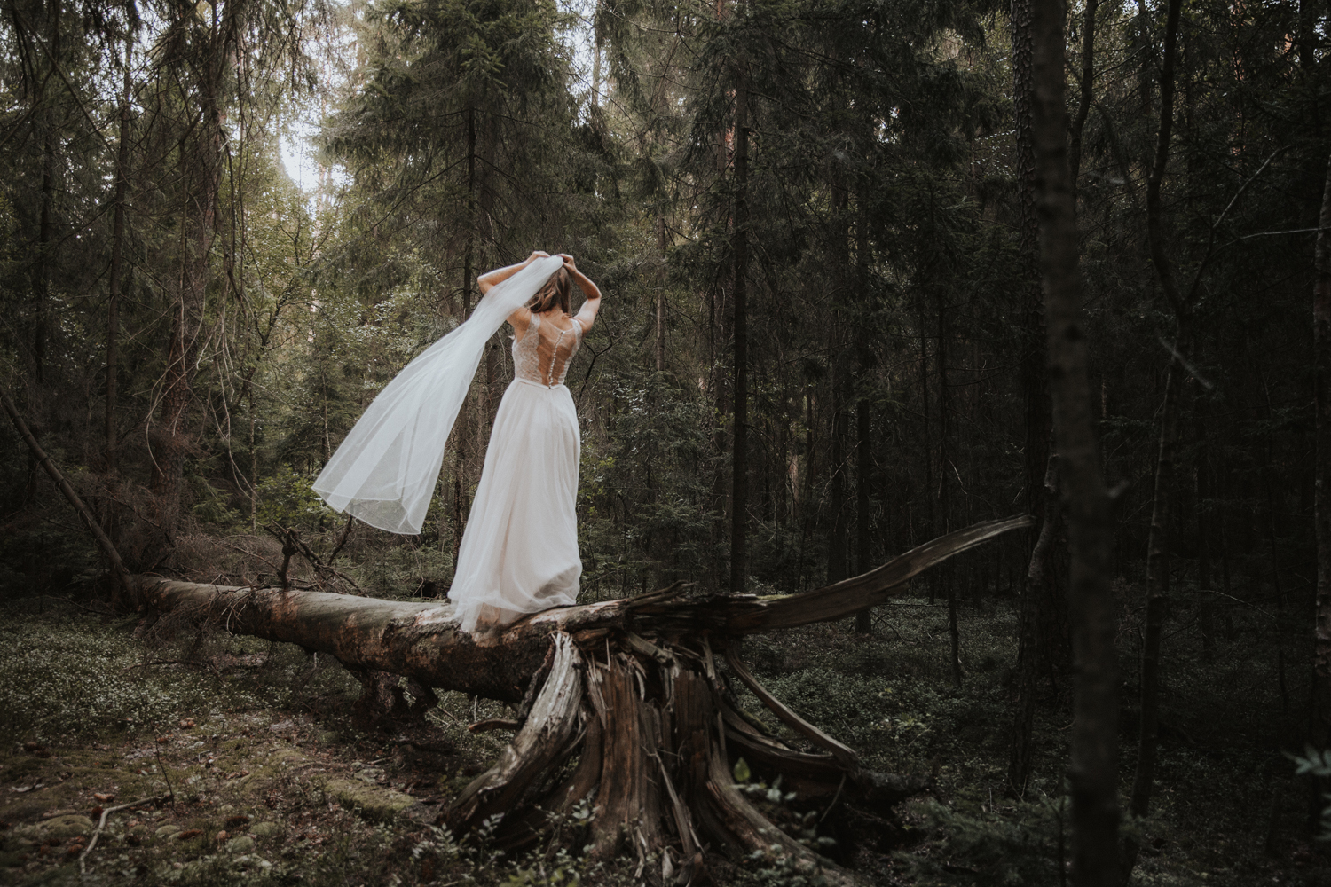 weddingphotograher_klaudia_rafal_nationalpark_506.jpg
